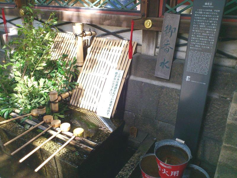 gokounomiya049.jpg