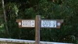 20141122丸火須津川084