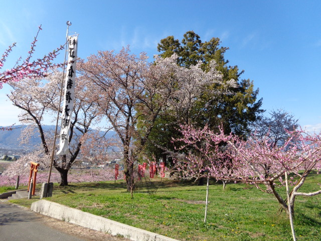 尾山稲荷2