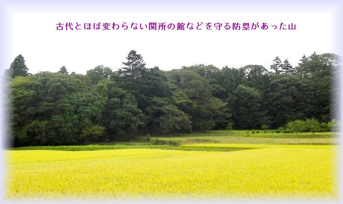 20131009111812a08.jpg