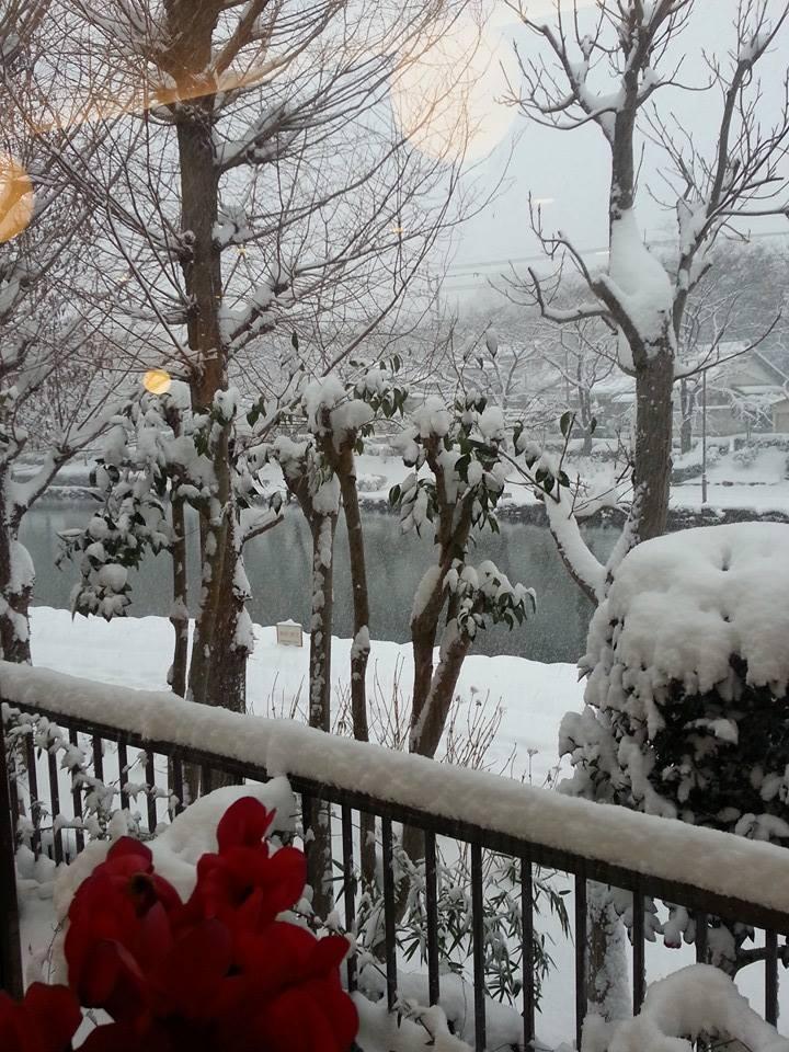 熟女NHヘルス孃マダム舞の袖振り合うも他生の縁|雪の降る日に