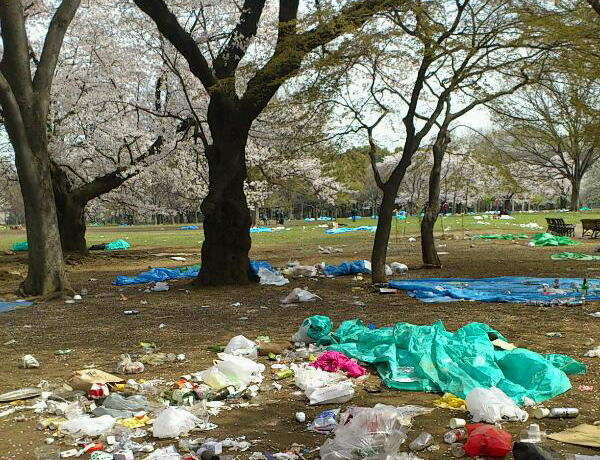 花見後の公園が悲惨な事に・・・ ゴミくらい持って帰ろうよ (画像あり) : にわか日報