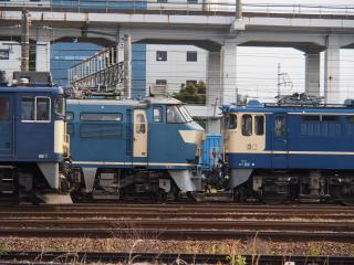 EF65 電気機関車
