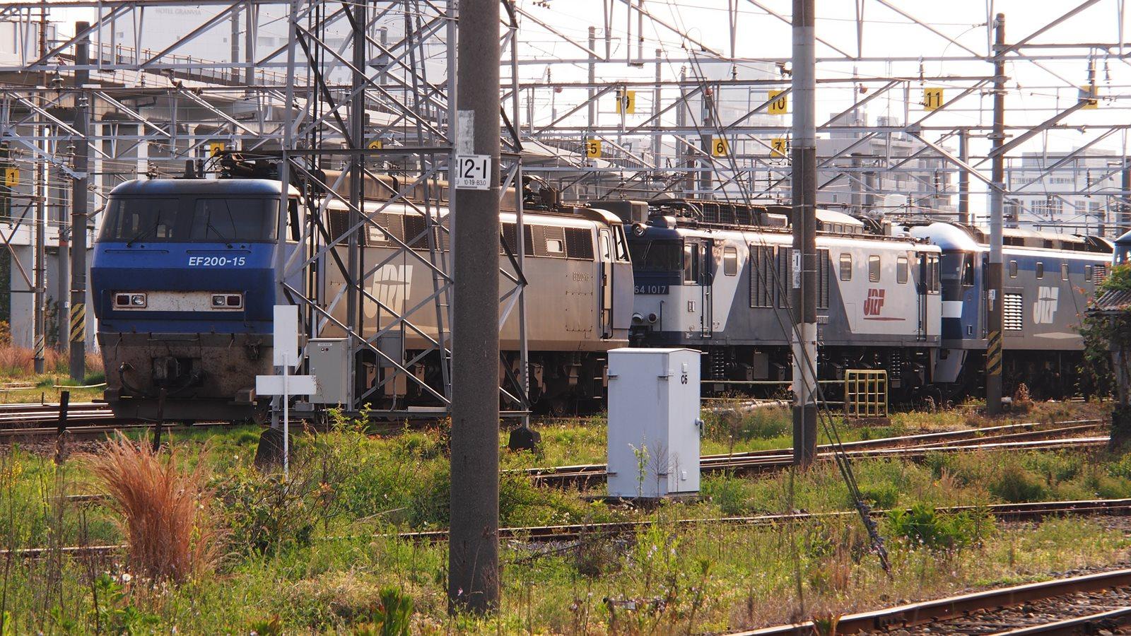P5040276TR169_R.jpg