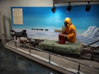 南極観測隊