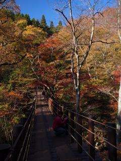 花貫渓谷の紅葉 汐見滝吊り橋