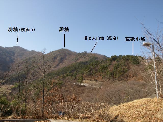 syouzyou2.jpg