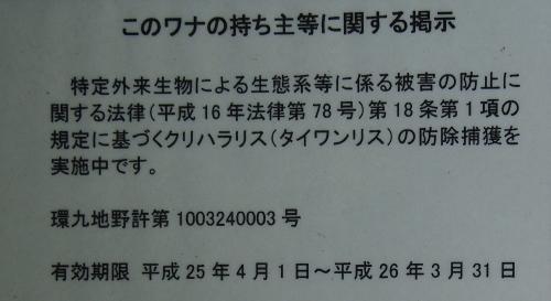 20140219225637e32.jpg