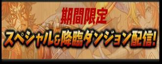 316_convert_20130530152046.jpg
