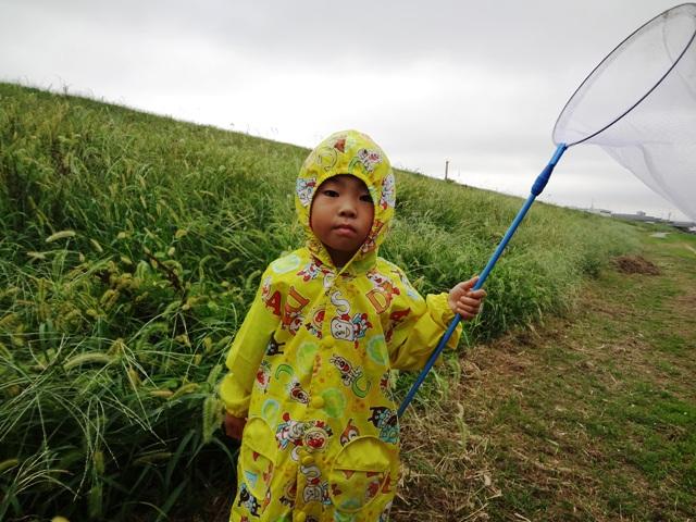 虫取り網を持つ陸ちゃん