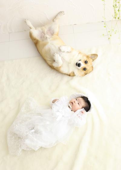 お宮参り 犬(わんちゃん)と2ショット