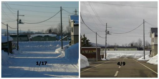 道路の雪融け