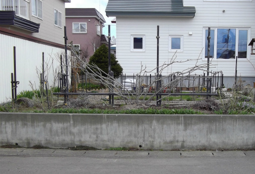 ラティス 取付け前の庭