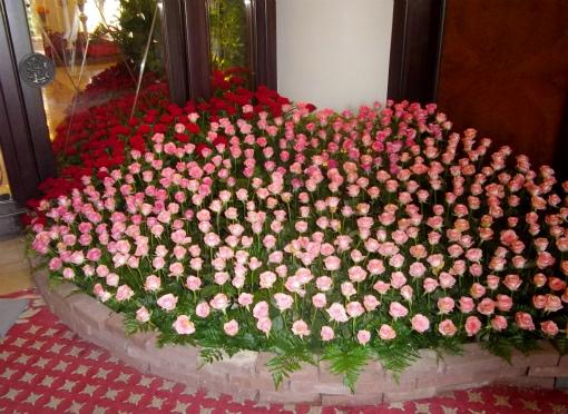 エントランスの薔薇