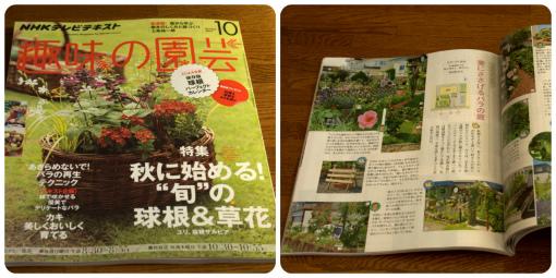 趣味の園芸10月号