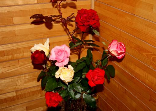 取り込んだ薔薇の花①