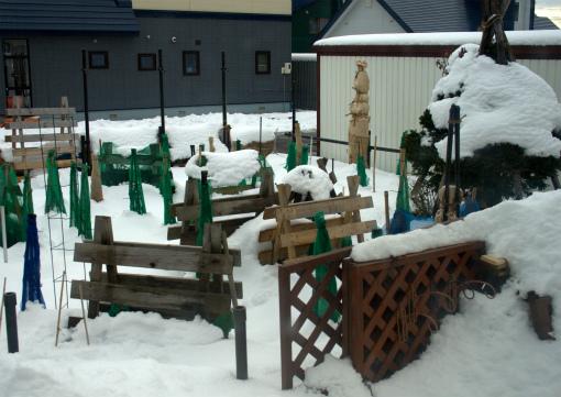 ラティスも雪の中