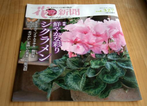 今回の花新聞
