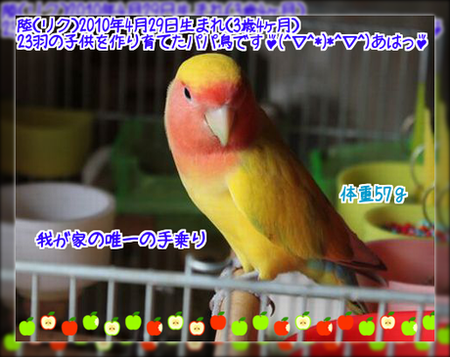 20130826142934c98.png
