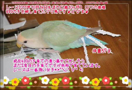 20130826143012f21.png