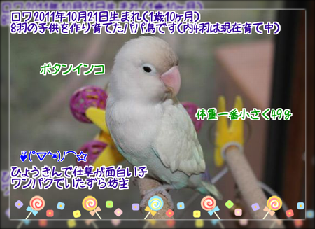 20130826143019b2a.png