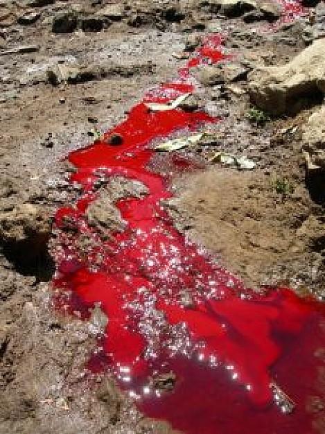 bloody-river_2590345.jpg