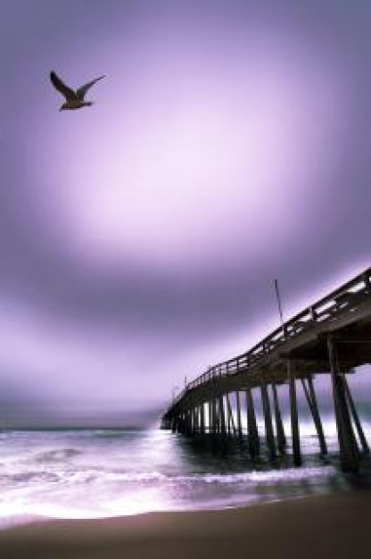 myrtle-beach-pier-sunrise-pier_19-138233.jpg