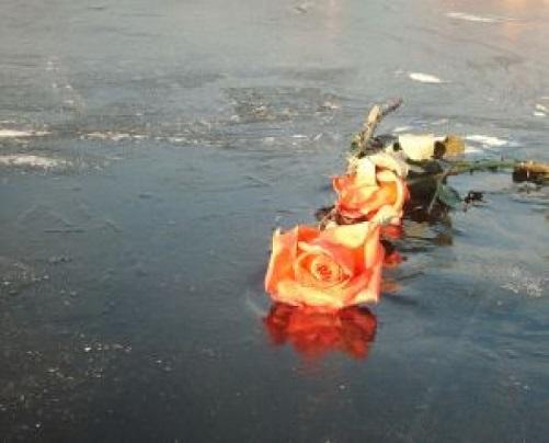 水面に死んだバラ