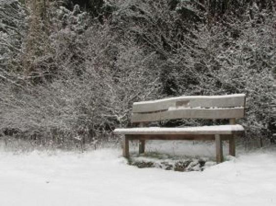 フリー画像雪のベンチ