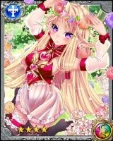 美樹姫グランシィア(RR)