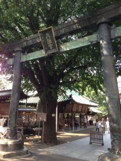 yushima_tori.jpg