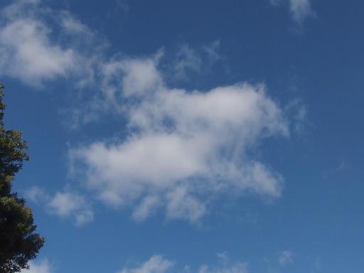 20140119・緑森空11・八幡湿地