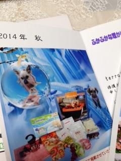 20141208213535a2e.jpg