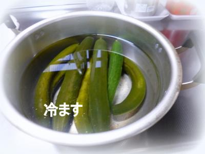 Qchan3.jpg