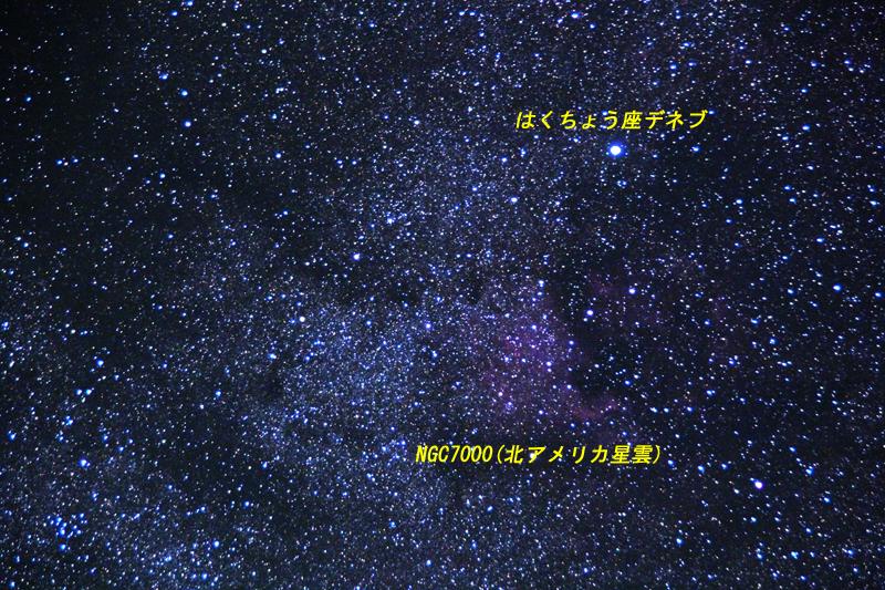 201306012-03.jpg