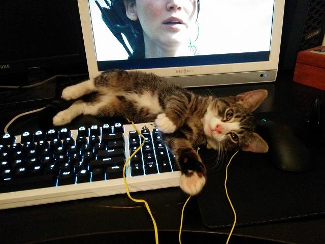 Mechanical_Keyboard36_38.jpg