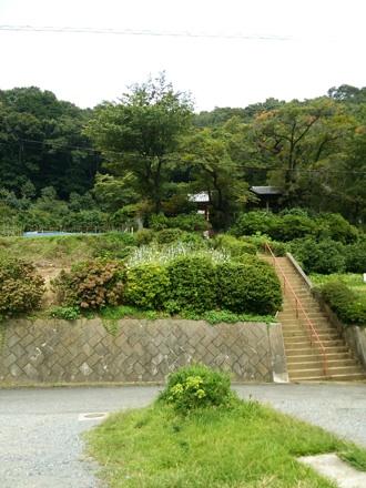 20130914_katuragi2.jpg