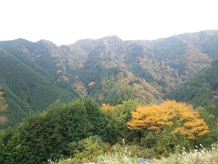 20131109_kazahari2.jpg