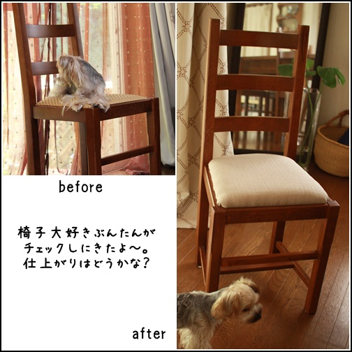 toshi131016-24.jpg