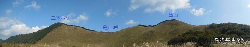 DSCN3337.jpg